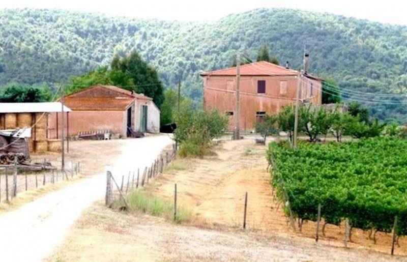 aziende-agricole-vendita-toscana-2